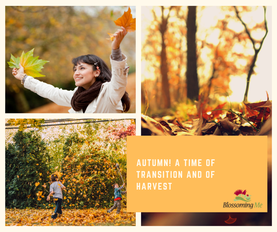 Autumn – A Season of Transitions and of Harvest