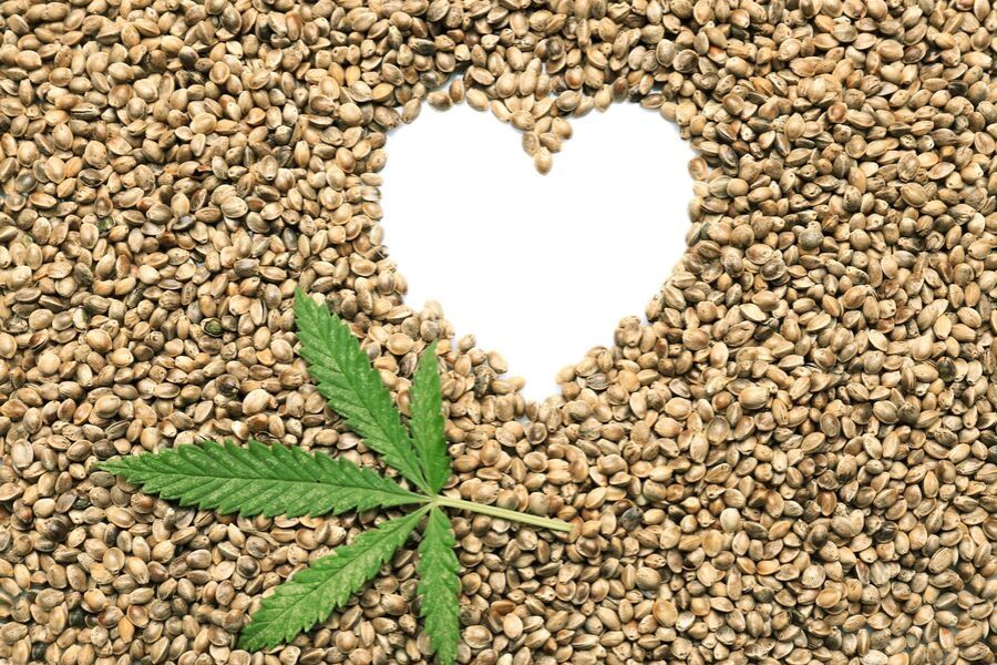 Hemp Seeds… Good or Bad?